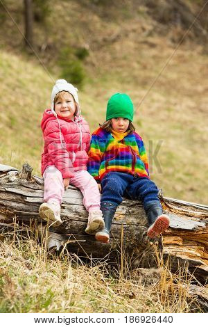 Two little children in nature sitting on an old tree trunk