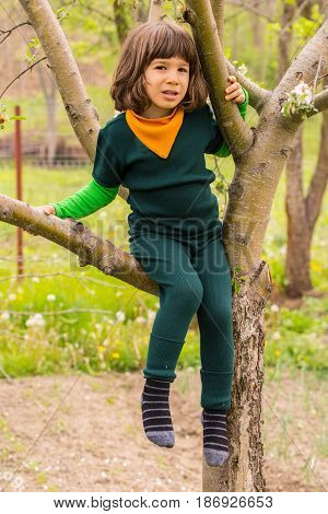 Little child boy in green wool clothes climbing in the tree