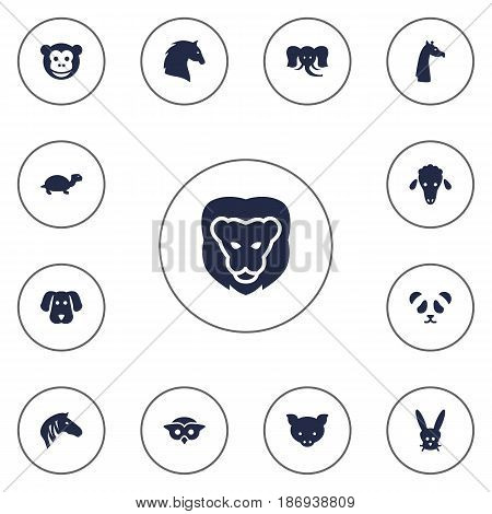 Set Of 13 Brute Icons Set.Collection Of Night Fowl, Camelopard, Bunny And Other Elements.