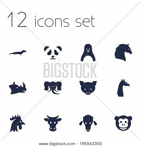 Set Of 12 Alive Icons Set.Collection Of Hog, Rhinoceros, Bear And Other Elements.