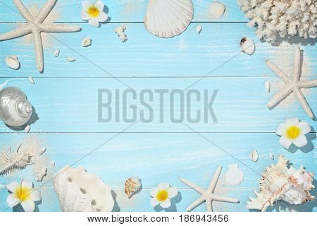 Seashells on wooden background,Copy space for your text.