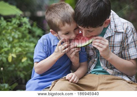 Brothers eating watermelon together