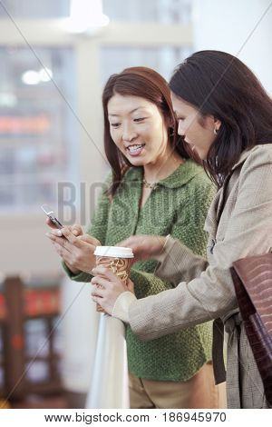 Asian woman looking at cell phone