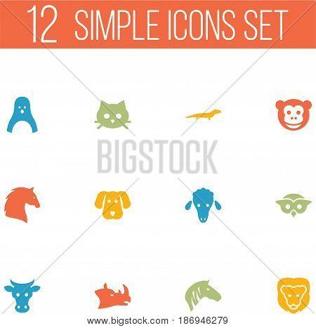 Set Of 12 Alive Icons Set.Collection Of Night Fowl, Wildcat, Steed And Other Elements.