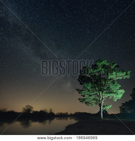 Night landscape of a lone tree on the river bank against the background of the starry sky. Billions of stars of the Milky Way over the scenery of the nature of the forest, tree, lake