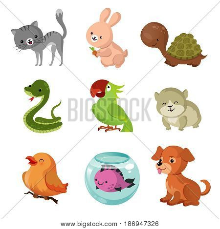 Pets domestic animals vector flat icons. Animal pets cartoon, collection of puppy character pet friend illustration