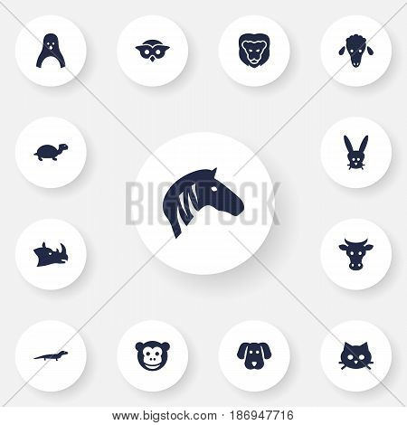 Set Of 13 Brute Icons Set.Collection Of Kine, Pussy, Lamb And Other Elements.