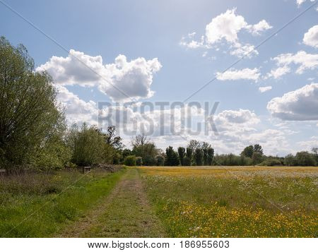Peaceful Summer Scene Of A Path Through A Countryside Location In The Uk In Essex