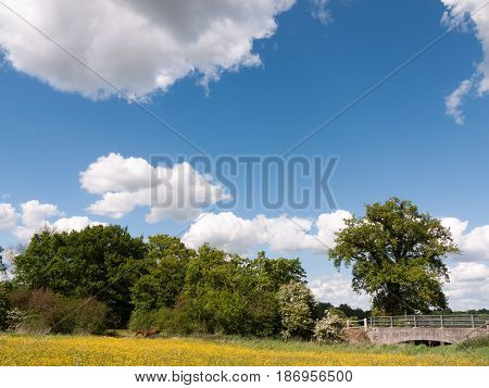 A Beautiful Country Scene Outside Peaceful Summer Afternoon In Essex Uk