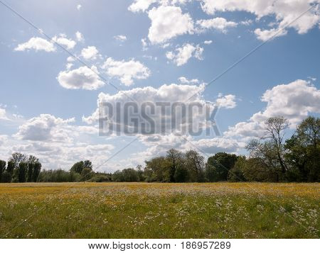 A Marvelous Countryside Scene Outside In The Summer In The Uk Essex And England With No People