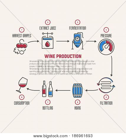 Thin line infographic of wine fermentation, making. How wine is made, wine elements, creating a wine, winemaker tool set and vineyard. Production of alcoholic beverages. Vector illustration.