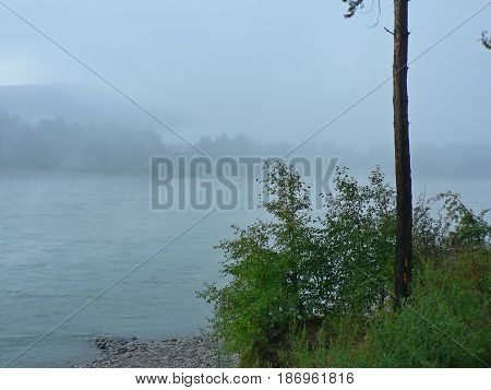 Fog over the river. Far shore in the haze. Trees in the foreground. River Katun, Altai Mountains, Russia.