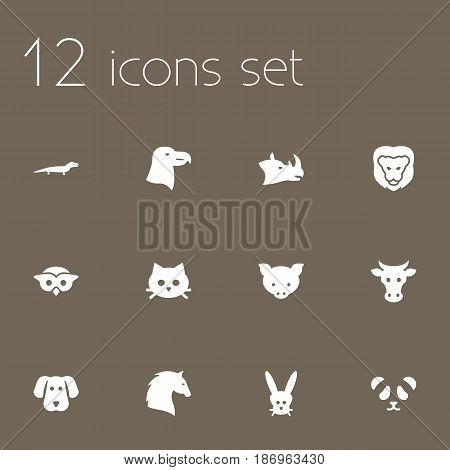 Set Of 12 Alive Icons Set.Collection Of Hog, Steed, Gecko And Other Elements.