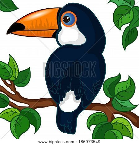 Toucan Character on a Branch, Hand Drawn Cartoon, White Background with Leaves, Vector Illustration EPS 10