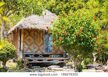 traditional straw house in Thailand tropical park , Phi phi island