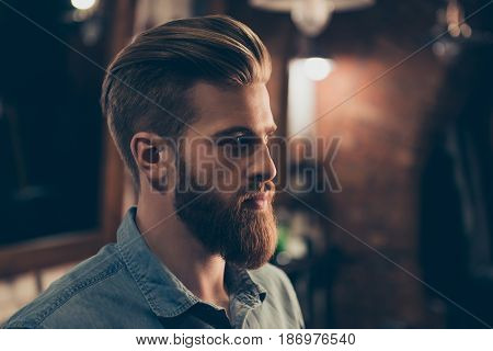 Barbershop Concept. Profile Side Portrait Of Attractive Severe Brutal Red Bearded Young Guy. He Has