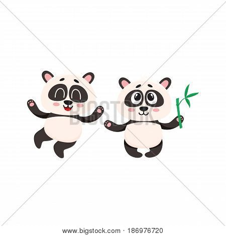 Two cute, funny happy baby panda characters standing, looking up, cartoon vector illustration isolated on white background. Couple of cute little panda bear characters, mascots with paws raised up
