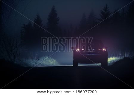 Dense Fog Countryside Car Drive. Driving Vehicle in Dangerous Foggy Conditions During Night Hours.