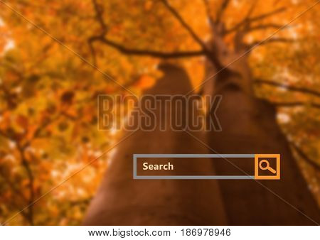 Digital composite of Search Bar with forest background