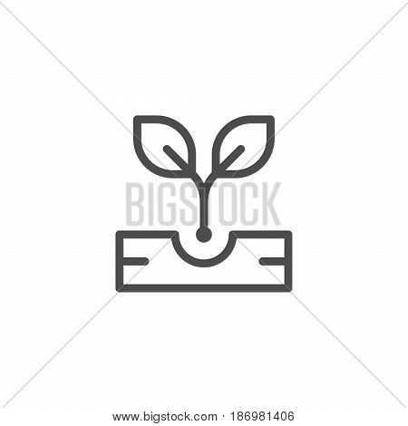 Sprout line icon isolated on white. Vector illustration
