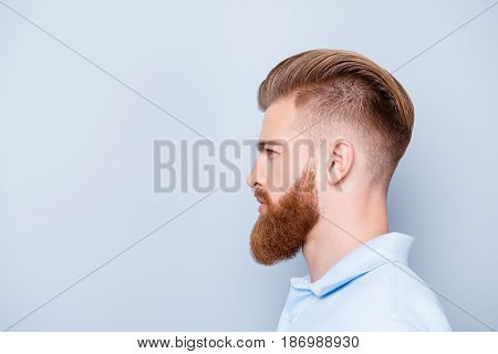 Advertising Barbershop Concept. Profile Side Portrait Of Confident Handsome Red Bearded Young Man. H
