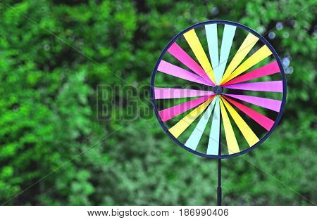 multi colored round pin wheel in front of green shrubs