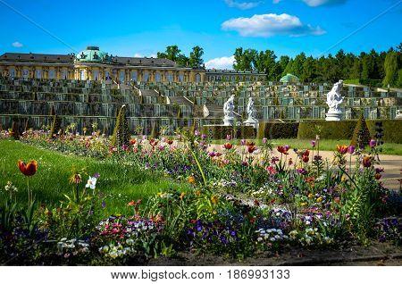 flower garden of castle sanssouci, potsdam, germany