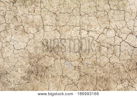 View on a extremely dry Ground. Close-up of a Soil. Dry river bed. Extreme Dryness