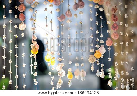 Variety seashells hanging for Curtain shells and mobile decoration, home interior decoration by seashell curtain