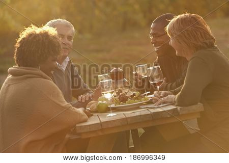 Friends having picnic and drinking wine