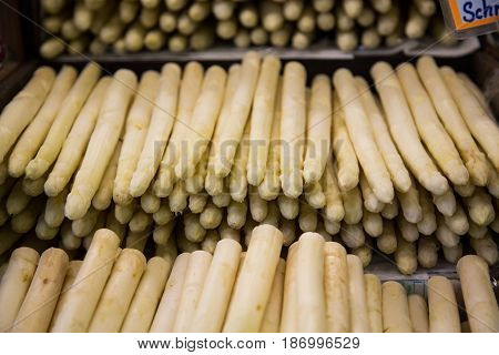 Asparagus on the market white asparagus fresh on the market