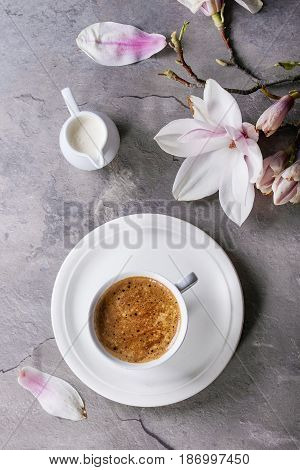 White cup of black coffee, served on white saucer with jug of cream and magnolia flower blossom branch over gray texture background. Flat lay, space