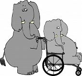 This illustration depicts an elephant pushing another elephant in a wheelchair. poster