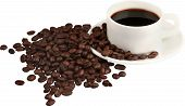 Coffee coffee beans isolated cup of coffee coffee cup hot drink caffeine poster