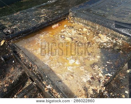 Grease And Juices Overflowing From Grease Trap