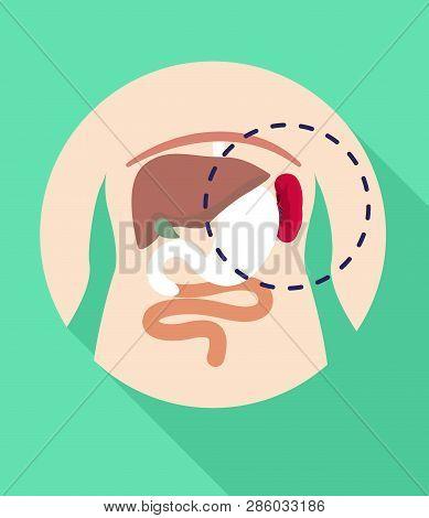 Spleen Location Icon. Flat Illustration Of Spleen Location Vector Icon For Web Design