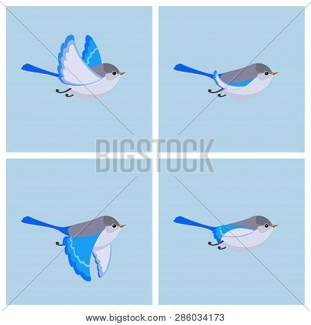 Vector Illustration Of Cartoon Flying Splendid Fairy Wren (female) Sprite Sheet. Can Be Used For Gif