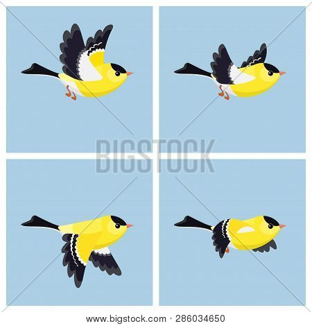 Vector Illustration Of Cartoon Flying American Goldfinch (male) Sprite Sheet. Can Be Used For Gif An