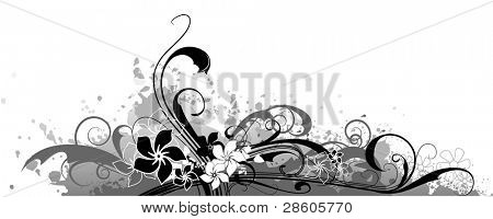 Floral vector composition