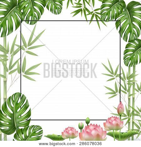 Realistic Beautiful Tropical Plants Template With Frame For Text Bamboo Stems Monstera Palm Leaves L