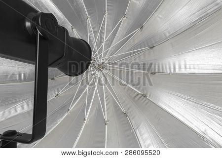 Studio Lighting Isolated On White. Object. Close Up. Macro Photography