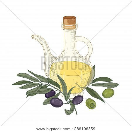 Elegant Drawing Of Extra Virgin Oil In Glass Jug, Olive Tree Branches With Leaves, Black And Green F