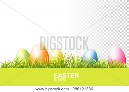 Painted Easter Eggs And Realistic Green Fresh Grass. Vector Banner On Transparent Background