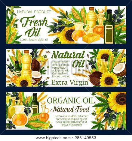 Natural Oils, Salads Dressing And Food Cooking Ingredient. Vector Sunflower, Olive Or Linseed Flax A