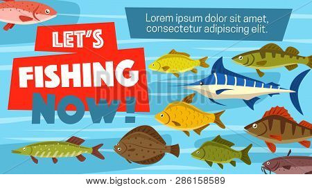 Fishing Sport License And Fish Catch Time Poster. Vector Fisherman Adventure In Sea, Ocean Or Lake F