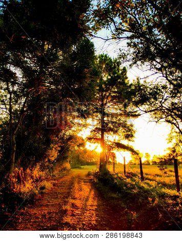 A Pretty Road To A Pretty Sunset.