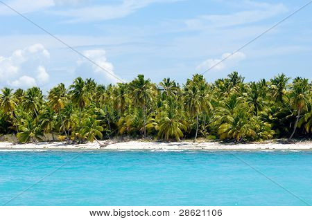 Caribbean island with a nice beach and green palms. The picture of the beach is taken from a boat on sea.