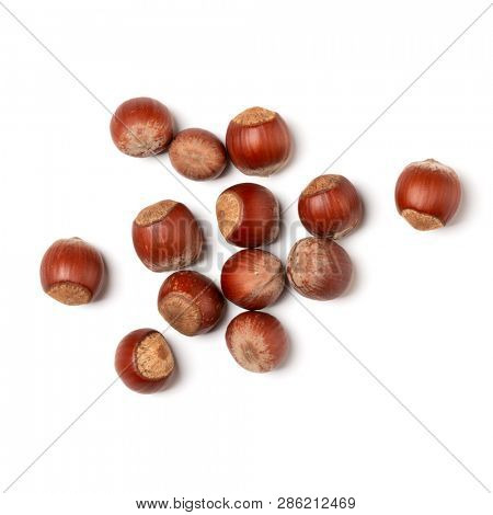 Hazelnuts isolated on white background closeup. Food concept. Top view, flat lay.