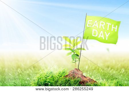 Young Plant And Small Pole With Green Flag With Earth Day Message On Fertile Soil In Meadow With Sun
