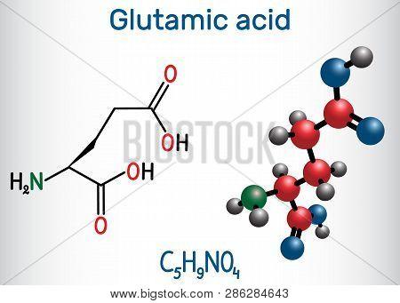 Glutamic Acid (l- Glutamic Acid, Glu, E) Aliphatic Amino Acid Molecule.  Structural Chemical Formula